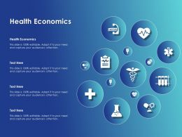 Health Economics Ppt Powerpoint Presentation Icon Example Introduction