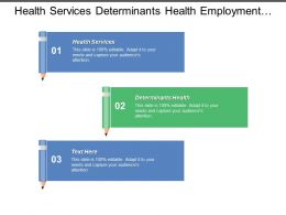 Health Services Determinants Health Employment Working Conditions Developments Trends