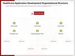 Healthcare Application Development Organizational Structure Ppt Infographics