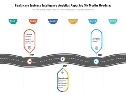 Healthcare Business Intelligence Analytics Reporting Six Months Roadmap