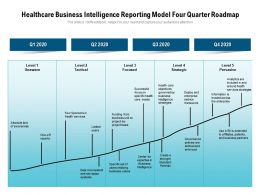 Healthcare Business Intelligence Reporting Model Four Quarter Roadmap