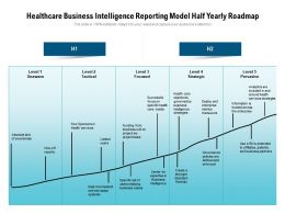 Healthcare Business Intelligence Reporting Model Half Yearly Roadmap