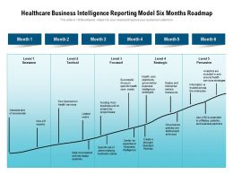 Healthcare Business Intelligence Reporting Model Six Months Roadmap