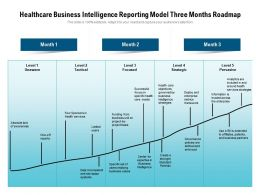 Healthcare Business Intelligence Reporting Model Three Months Roadmap