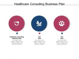 Healthcare Consulting Business Plan Ppt Powerpoint Presentation Ideas Cpb