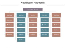 Healthcare Payments Ppt Powerpoint Presentation File Display Cpb