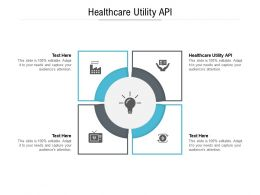 Healthcare Utility API Ppt Powerpoint Presentation Layouts Mockup Cpb