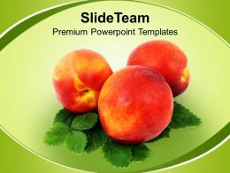 healthy_diet_food_powerpoint_templates_ppt_themes_and_graphics_0213_Slide01