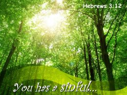 Hebrews 3 12 You Has A Sinful Powerpoint Church Sermon