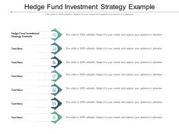 Hedge Fund Investment Strategy Example Ppt Portfolio Examples Cpb