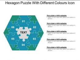 Hexagon Puzzle With Different Colours Icon