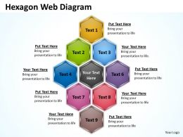 hexagon web diagram ppt slides