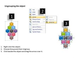 hexagon_web_diagram_ppt_slides_Slide03