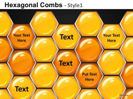 Hexagonal Combs Style 1 Powerpoint Presentation Slides DB