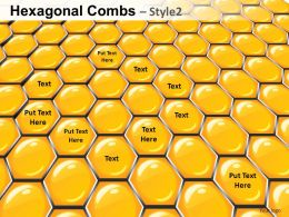 Hexagonal Combs Style 2 Powerpoint Presentation Slides
