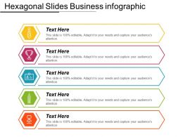 Hexagonal Slides Business Infographic Ppt Slide