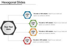 Hexagonal Slides Ppt Sample Download