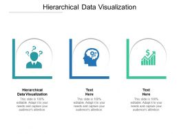 Hierarchical Data Visualization Ppt Powerpoint Presentation Infographic Template Cpb