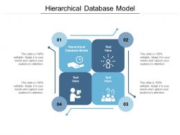 Hierarchical Database Model Ppt Powerpoint Presentation Professional Display Cpb