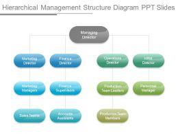 Hierarchical Management Structure Diagram Ppt Slides