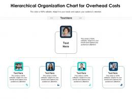 Hierarchical Organization Chart For Overhead Costs Infographic Template