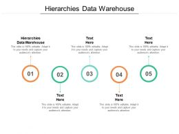 Hierarchies Data Warehouse Ppt Powerpoint Presentation Pictures Slides Cpb
