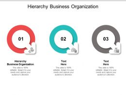 Hierarchy Business Organization Ppt Powerpoint Presentation Infographic Template Information Cpb
