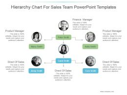 Hierarchy Chart For Sales Team Powerpoint Templates