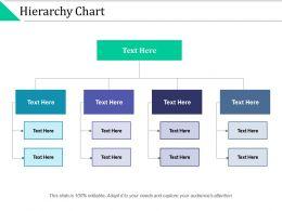Hierarchy Chart Management Marketing Ppt Powerpoint Presentation Slides Gridlines