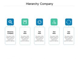Hierarchy Company Ppt Powerpoint Presentation Summary Background Cpb