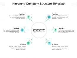 Hierarchy Company Structure Template Ppt Powerpoint Presentation Pictures Show Cpb