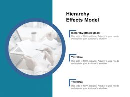 Hierarchy Effects Model Ppt Powerpoint Presentation File Slides Cpb