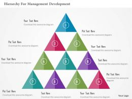 Hierarchy For Management Development Flat Powerpoint Design