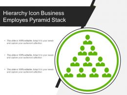 Hierarchy Icon Business Employes Pyramid Stack