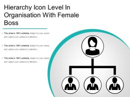 Hierarchy Icon Level In Organisation With Female Boss