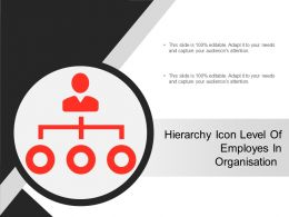 Hierarchy Icon Level Of Employes In Organisation