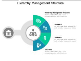 Hierarchy Management Structure Ppt Powerpoint Presentation Ideas Icons Cpb