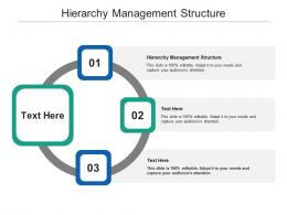 Hierarchy Management Structure Ppt Powerpoint Presentation Styles Topics Cpb