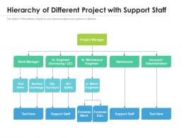 Hierarchy Of Different Project With Support Staff