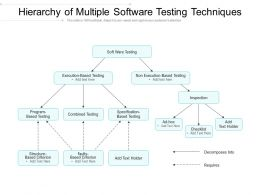 Hierarchy Of Multiple Software Testing Techniques