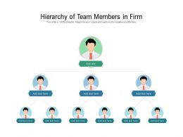 Hierarchy Of Team Members In Firm