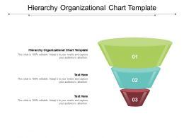Hierarchy Organizational Chart Template Ppt Powerpoint Presentation Graphics Cpb
