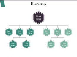 Hierarchy Powerpoint Templates Microsoft