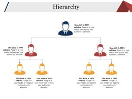 Hierarchy Ppt Background Designs