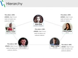 Hierarchy Ppt Example
