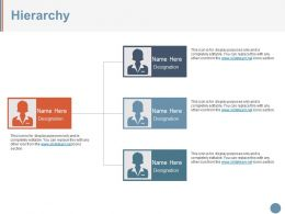 Hierarchy Ppt Examples Professional