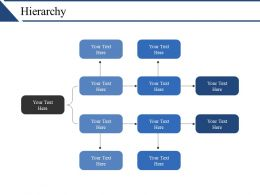 Hierarchy Ppt Examples Slides