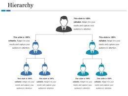Hierarchy Ppt File Graphic Tips