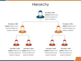 Hierarchy Ppt Guide
