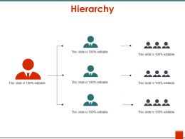 Hierarchy Ppt Ideas